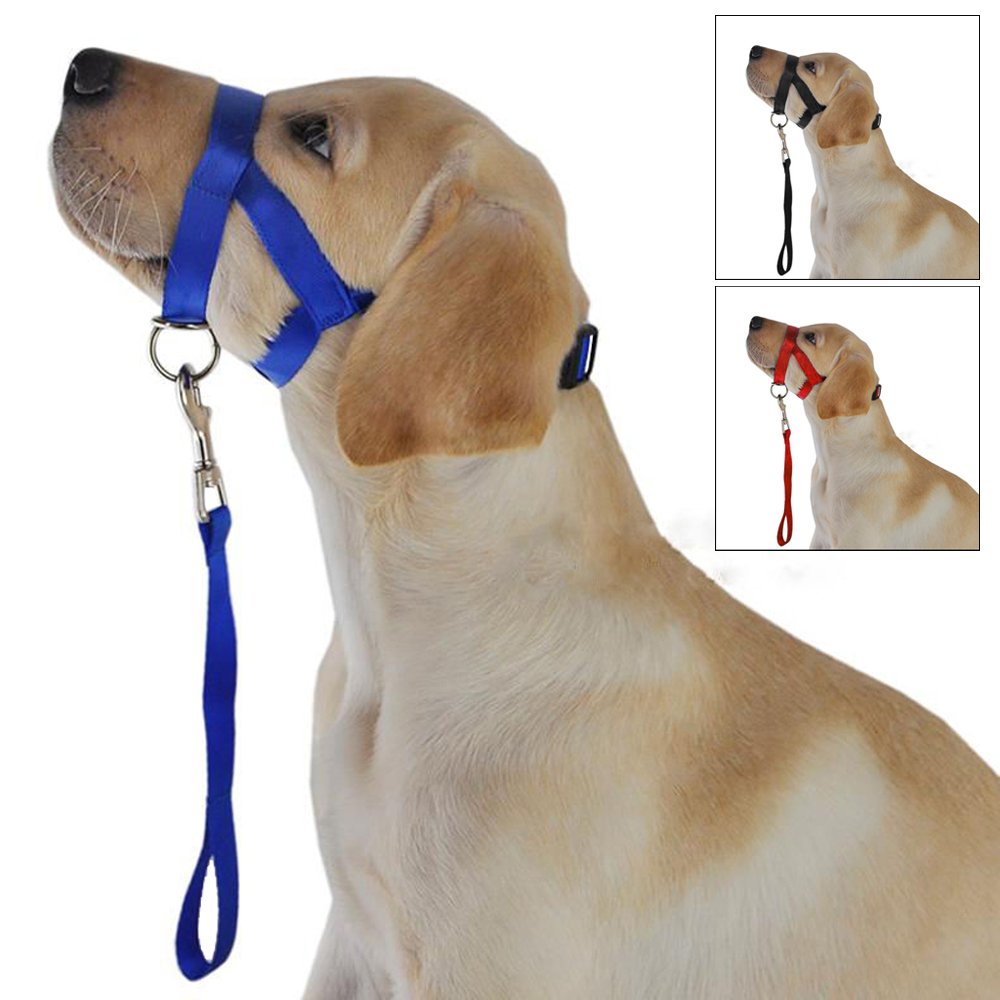 Dog Head Collar Pet Training Gentle Halter Leash Stop Dogs Pulling Training Tool S M L XL Sizes Black Blue Red Colors(China (Mainland))