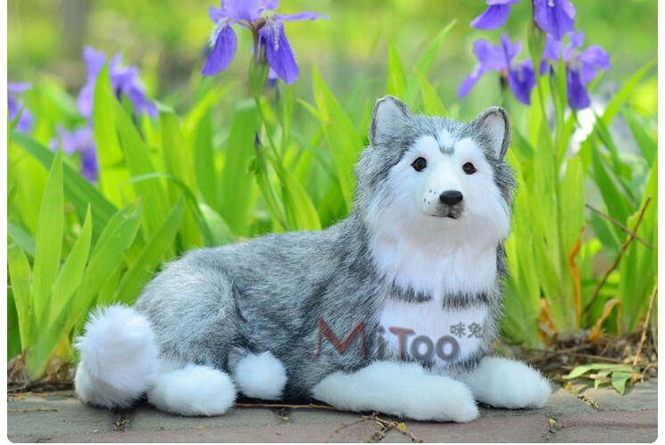 simulation animal large husky dog model toy,polyethylene&furs Resin handicraft,decoration gift,car accessories,baby toy d372(China (Mainland))