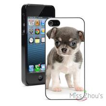 Small Chihuahua Puppy back skins mobile cellphone cases for iphone 4/4s 5/5s 5c SE 6/6s plus ipod touch 4/5/6