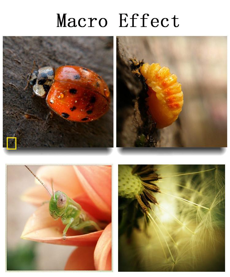 Комплект линз универсальных объективов даст Вам возможноть получать оригинальные снимки с помощью смартфона. Объектив имеет удобное и надежное крепление в форме клипсы. Купить, цена, бесплатная доставка!