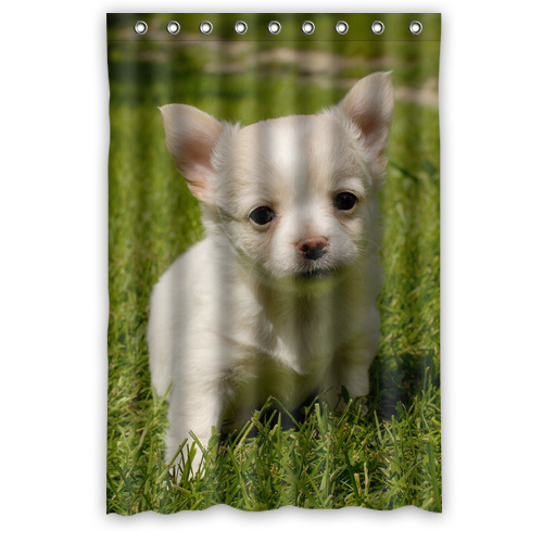 Fashion Fabric Shower Curtain Personalized Cute Dog Chihuahua Shower Curtain 48 IN x 72 IN (9 holes)(China (Mainland))