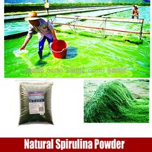Natural Organic Spirulina Powder health supplement Chlorella Powder(China (Mainland))