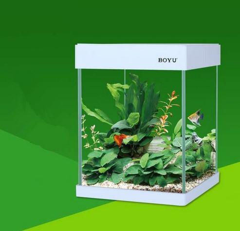 Aquarium poissons hd promotion achetez des aquarium for Promotion poisson aquarium