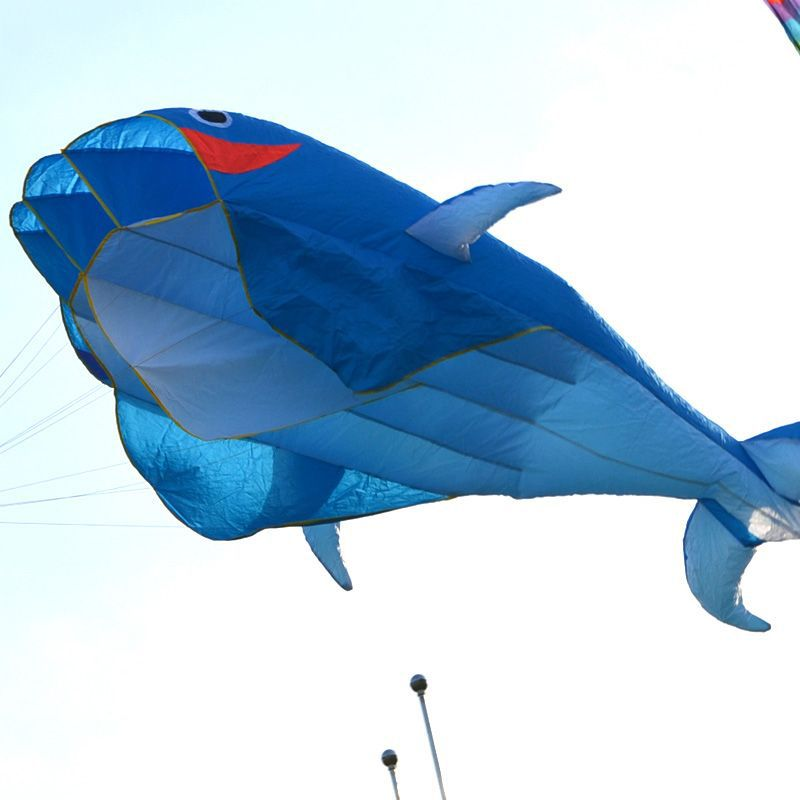 New 3D Huge Frameless Soft Parafoil Giant Dolphin Kite Blue With 100' line #56397(China (Mainland))