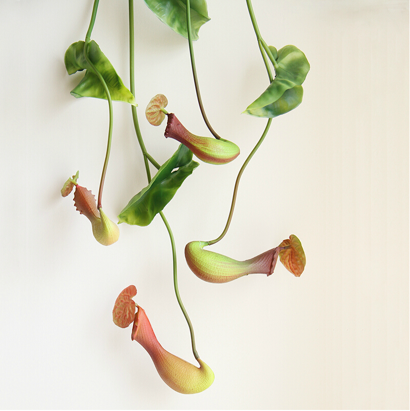 Home party decoration artificial flowers Nepenthes wall mounted Pitcher plants palstic decor(China (Mainland))