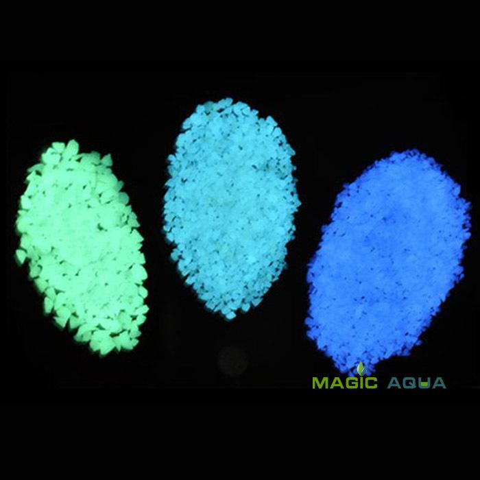 Magic Aqua 2/5 100 D147
