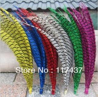 Pheasant Feather in pcs, 80-90,90-100,100-110cm etc