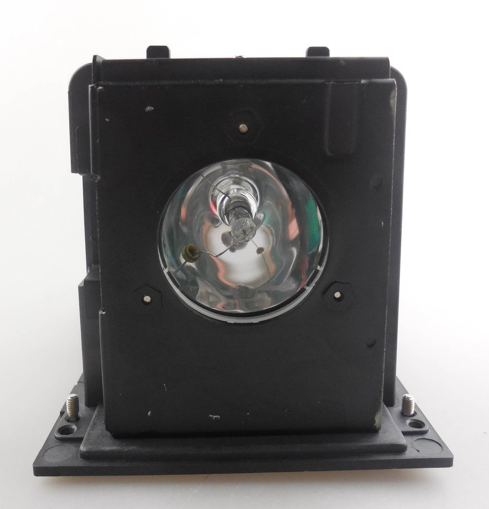 Фотография BL-FU250F/SP.L3703.001  Replacement Projector Lamp with Housing  for  OPTOMA H77 / H78 / H78DC3 / H79 / H76