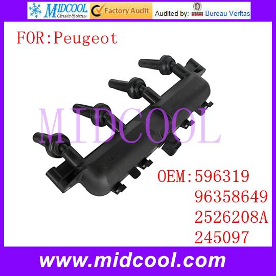 Новый катушка зажигания использования OE NO. 596319, 96358649, 2526208a, 245097 для Peugeot