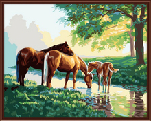 Buy Landscape Horse Framed Wall Paint Pictures Paint Numbers DIY Oil Canvas Painting Home Decor Living Room 40*50cm G154 for $18.31 in AliExpress store