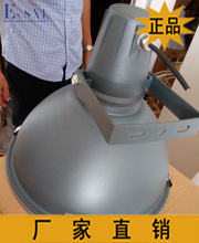 Morimoto 40W250W factory workshop of high frequency energy efficient Induction Lamp(China (Mainland))