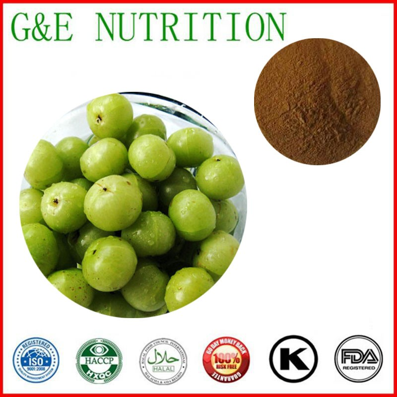 1000g Phyllanthus emblica/ Emblic leafflower fruit/ Amla Extract with free shipping<br><br>Aliexpress
