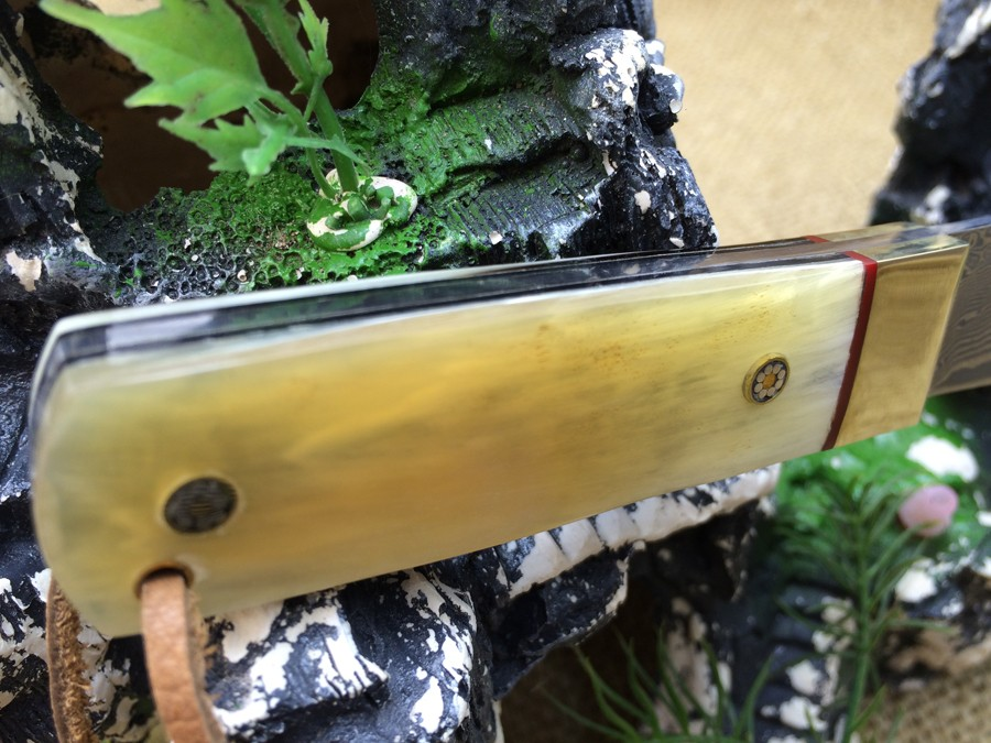 Buy high quality Damascus hunting knife 60HRC fixed blade knife Full Tang black wood handle outdoor survival Hiking knife with cheap