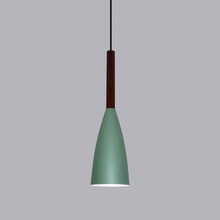 Modern Wood pendant lights Bar restaurant decor Colorful lamp Nordic Pendant Lamp hanging lamp for dining room(China)