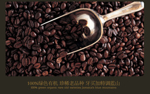 100 Jamaica Supremo Coffee Blue Mountain Coffee beans Whole Bean Fresh Medium Roasted Coffee