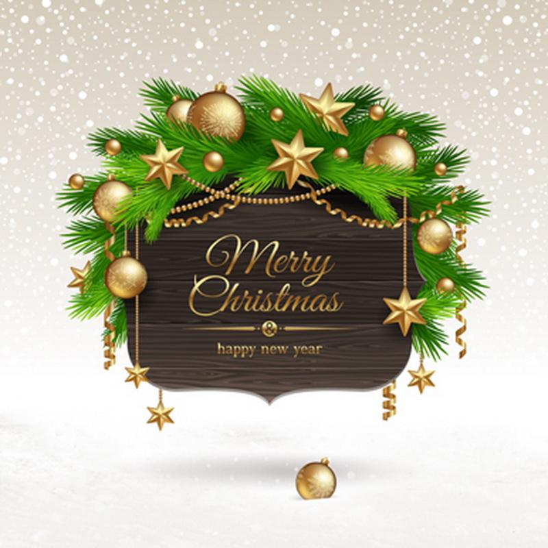 10x10FT Snowflakes Sky Pine Branch Balls Happy New Year Board Christmas Custom Photo Studio Backdrop Background Vinyl 8x8 10x12(China (Mainland))
