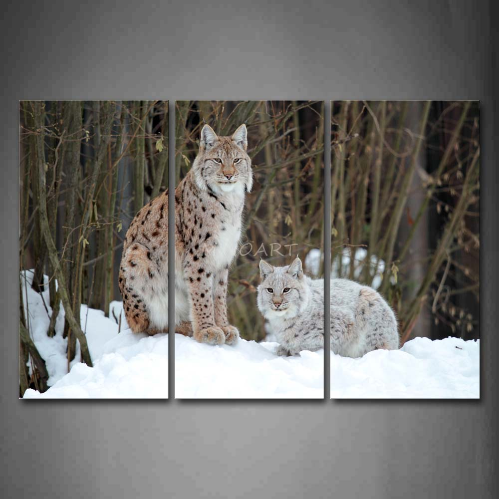3 Piece Wall Art Painting Two Lynxs Sit On Snowfield Tree Winter Picture Print On Canvas Animal 4 The Picture(China (Mainland))