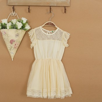 wholesale summer girl lace dress  kids princess dress 5pieces/lot most country free shipping