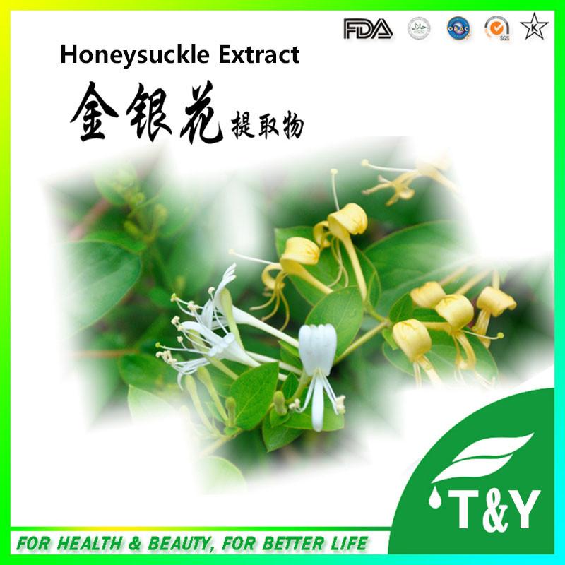 Manufacturer Direct Supply Pharmaceutical Grade Honeysuckle P.E.<br><br>Aliexpress