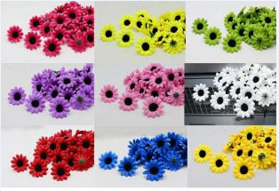 2015 New.High Quality Fresh 101pcs/lot Gerbera seeds, potted balcony, planting seasons, DIY planting flowers sprouting 95%Daisy(China (Mainland))