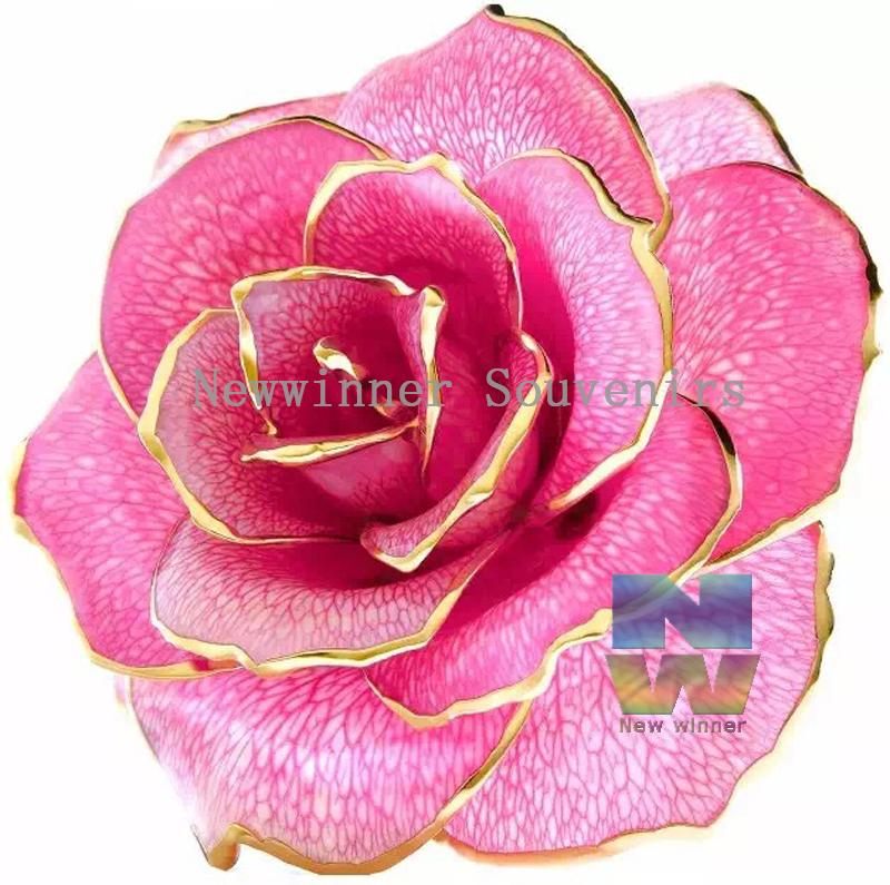 rosen farbe kaufen billigrosen farbe partien aus china rosen farbe lieferanten auf. Black Bedroom Furniture Sets. Home Design Ideas