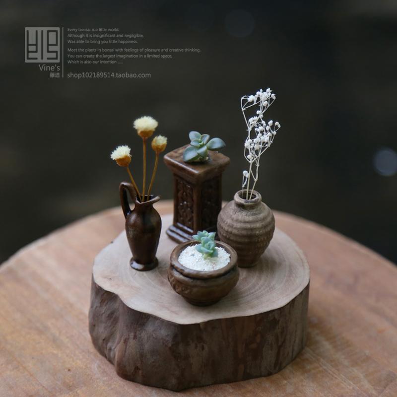 Mini jardim de plantas suculentas vaso de flores de cerâmica para