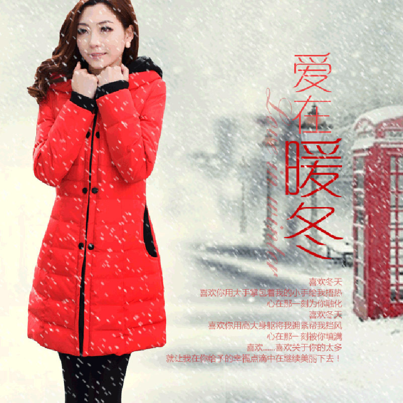 Winter Down Jackets 2014 High Quality Brand Women Coat Models In The Long Section Padded Padded Female Models New Winter Jacket(China (Mainland))