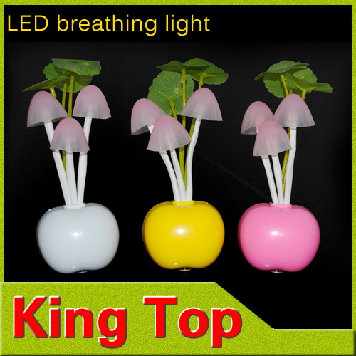 New EU US Plug Electric Induction LED night lamp Dream Mushroom Fungus Lam 3LED Nightlight home decor led RGB breathing lighting(China (Mainland))