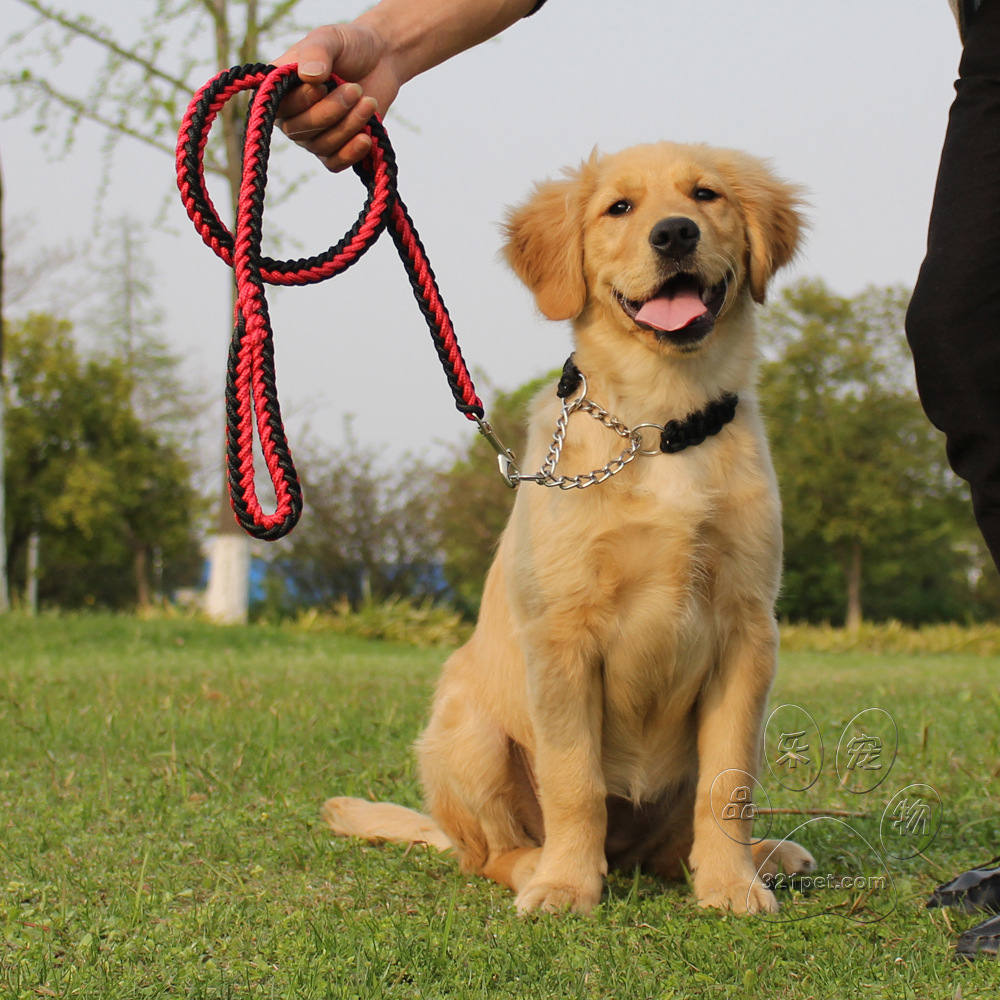 47 inch long Strong Nylon Dog Pet Safety Walking Training Lead Leash with Clip M L XL(China (Mainland))