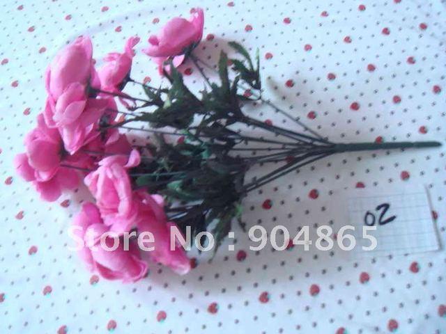 12 head camellia     02