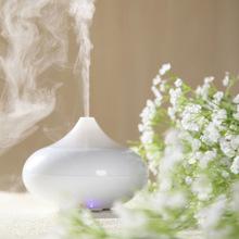 difusor de aroma Ultrasonic Air Humidifier Aroma Oil Diffuser Ionizer Generator Aromatherapy Office Purifier Mist Maker 12W(China (Mainland))