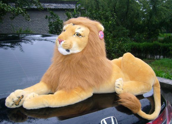 19 inch simulation lion plush toy lying brown lion doll gift w5412(China (Mainland))