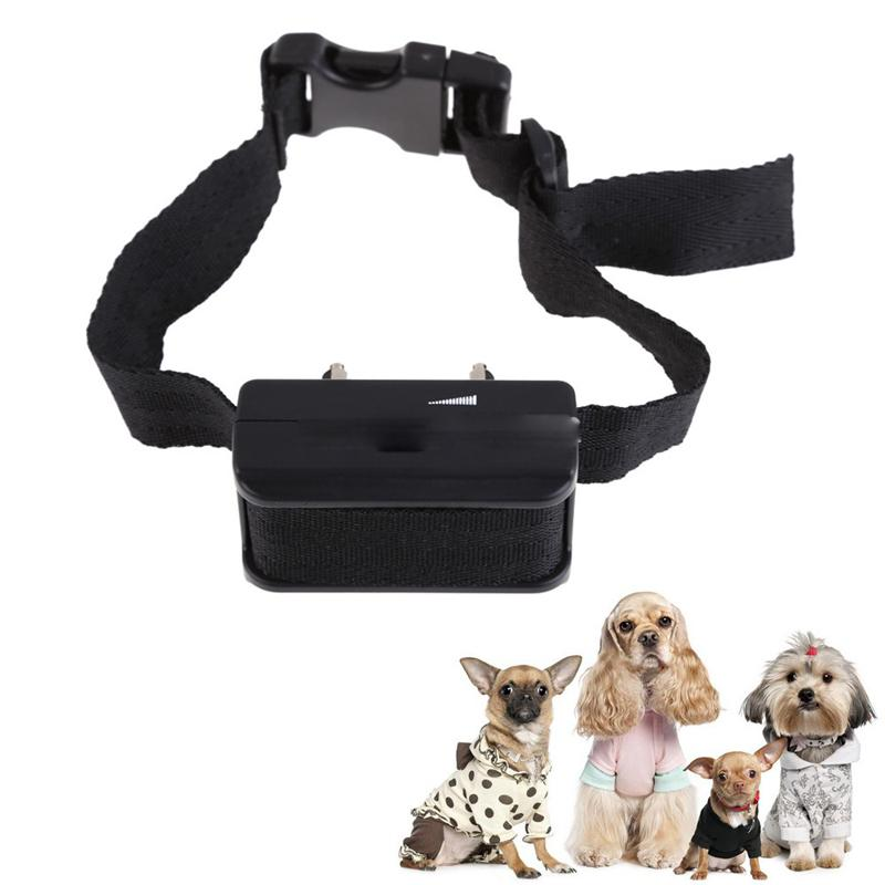 Bark Control Devices For Small Dogs
