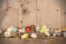 200Cm*150Cm Easter Photography Backdrops Hay Wood Walls Eggs Studio Photo Day Zj - Art photography Background store