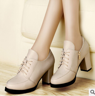 2014 Women Pumps & Classic Woman High Heels Shoes Fashion Lady Thickness Zipper Closed Casual