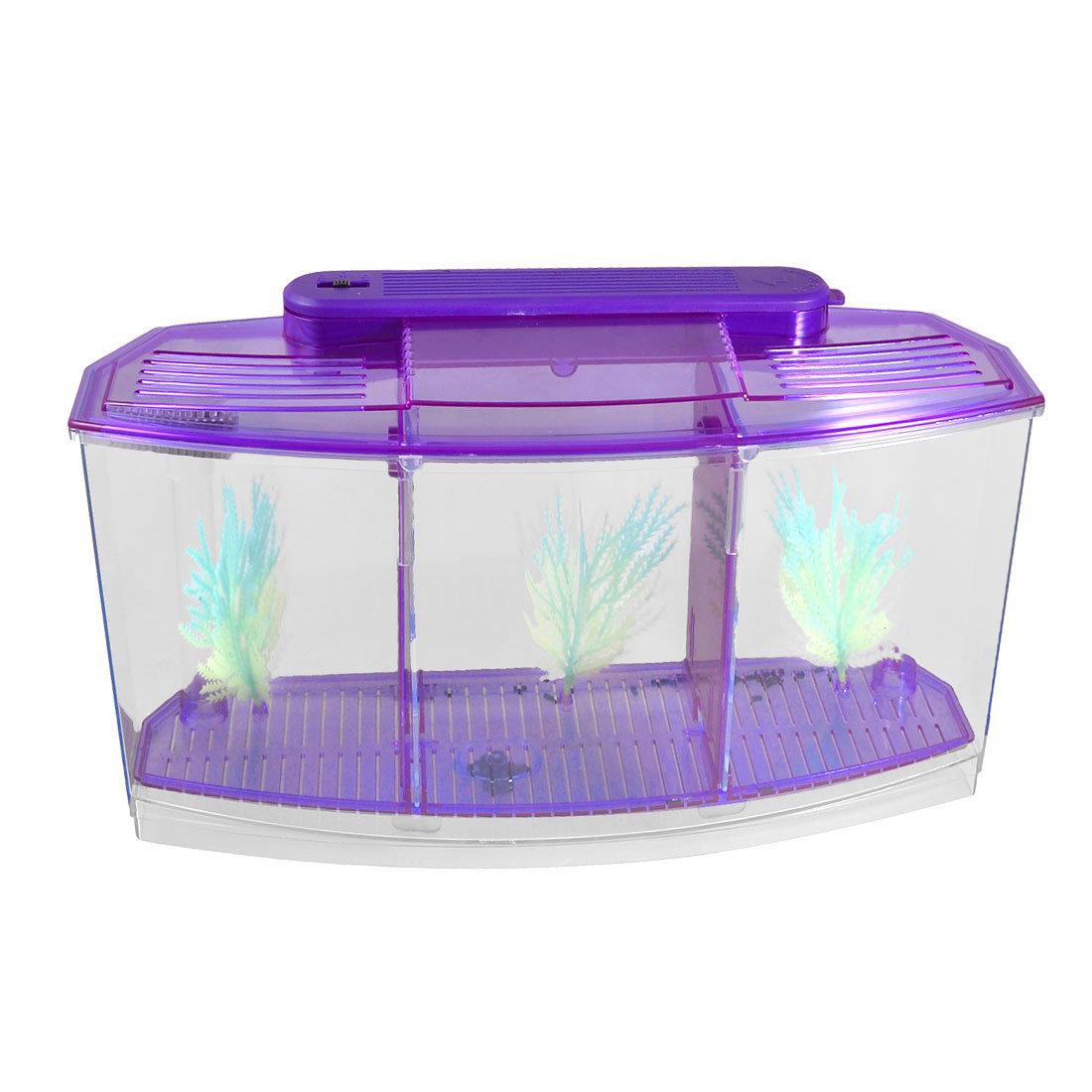 Achetez en gros poissons d 39 aquarium en ligne des for Mini poisson aquarium