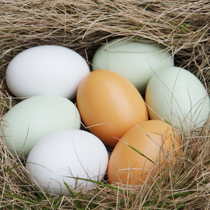 New Simulation Wooden Eggs Painting Education Supplies 3 Color For Choice(China (Mainland))