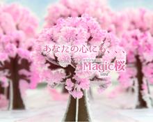 Free Shipping 240 Pieces Brilliant Cherry Blossom Mini Desktop Sakura Tree DIY Flower Tree(China (Mainland))