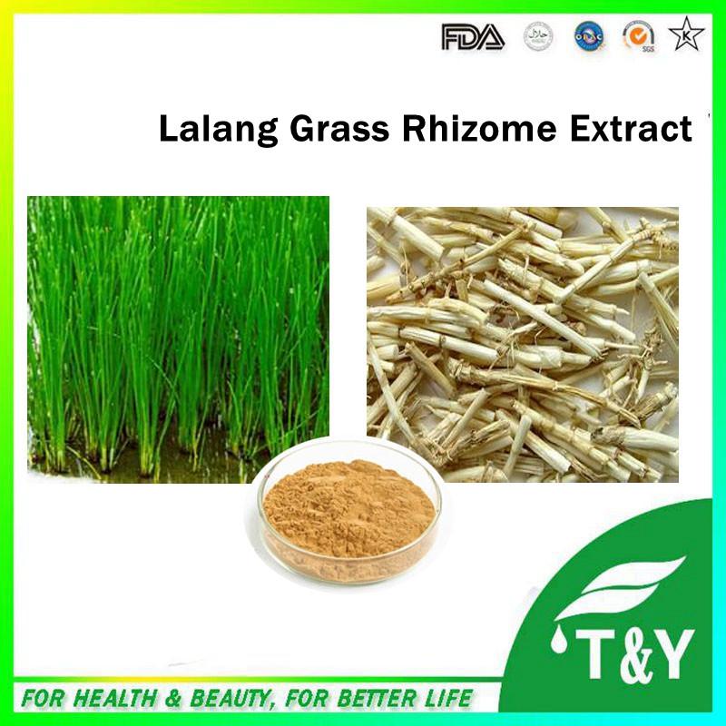 100% pure natural hebal extract Lalang Grass Rhizome Extract 400g/lot