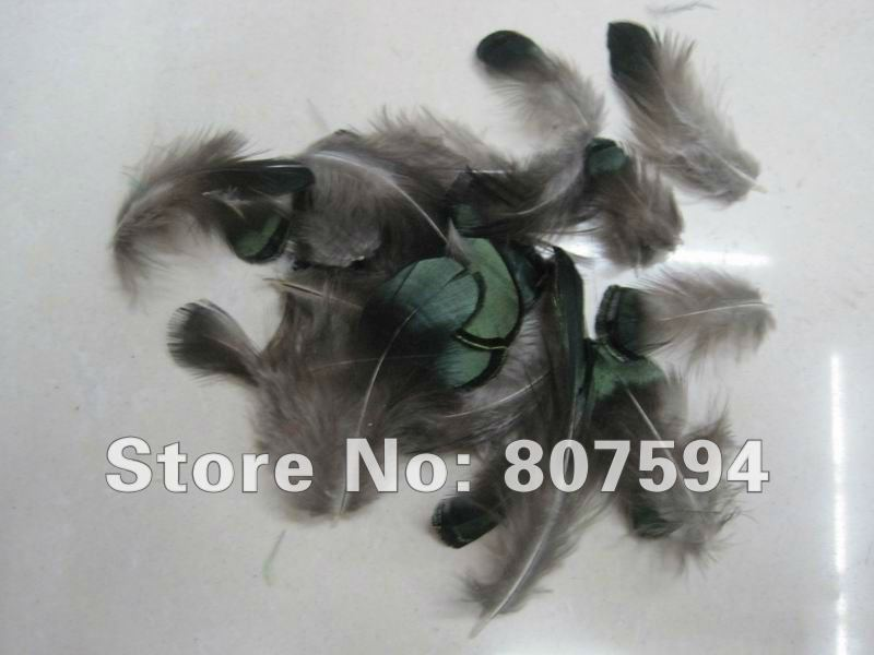 Free shipping 15pcs lot 5 8cm DIY pheasant Peacock feathers jewelry accessories green Precious rare feather