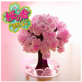 Pink Big Magic Growing Paper Sakura Tree Papel Pared Artificial Magical Grow Trees Desktop Cherry Blossom
