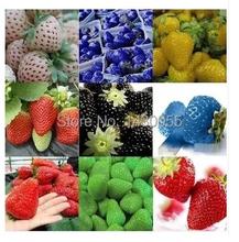 Sementes frutas 100pcs fruit seeds Strawberry Seeds for home case a jardim garden plants Bonsai seed semillas de plantas gift(China (Mainland))