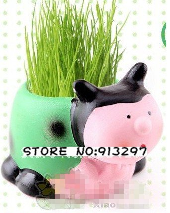 wholesale retail ladybird Gift cute Hair man Plant Bonsai Grass Doll Office Mini Plant Fantastic Home Decor pot+seeds 4 design(China (Mainland))