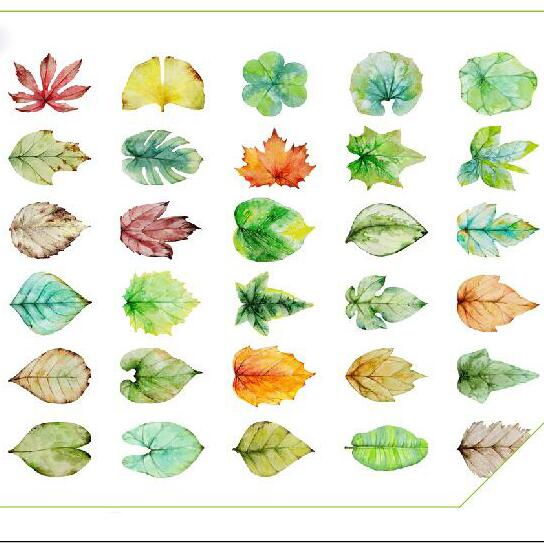 30pcs/pack New leaves design postcards Nice Stationry Greeting Cards Calendars Planner & Cards(China (Mainland))
