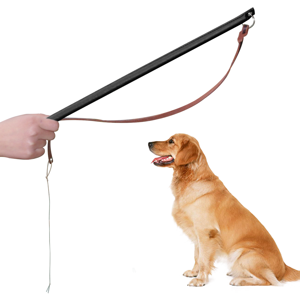 Dog Training Equipment Wholesale