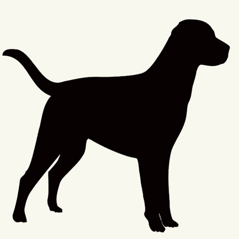 Pet Labrador Retriever Dog Graphic Animal art form Car Sticker For Zoo Truck SUV motorcycle Laptop Kayak Motorboat Vinyl Decal(China (Mainland))