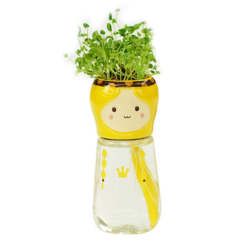 실내 사무실 식물 행사-행사중인 샵실내 사무실 식물 Aliexpress.com ...