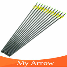 Changeable Arrowheads 12pcs 31 Spine 400 Carbon Shaft Arrow Hunting Archery With Plastic Feather For Compound