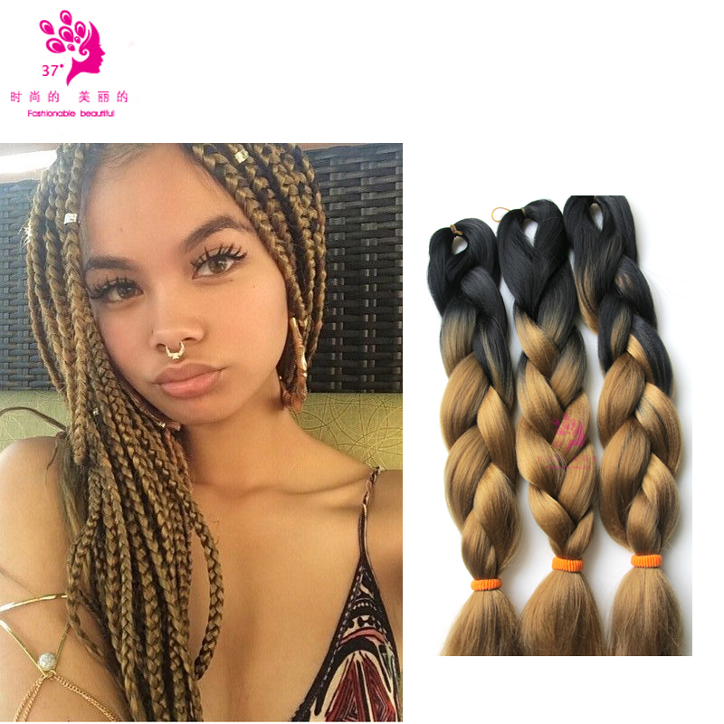 Micro Braids Two Tone Hair Color Pictures To Pin On