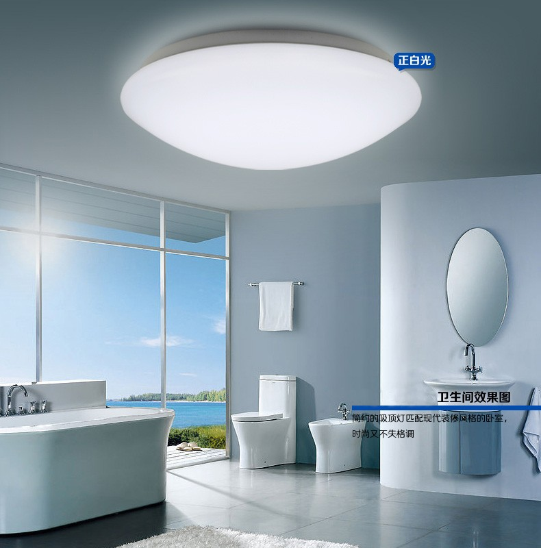 LED Apple Ceiling Light 12 -42W Dia35CM 100%High Quality Price Below USD50 Round Shape Lamp(China (Mainland))